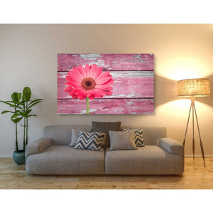 'Pink Beginnings' Canvas Wall Art,40 x 60