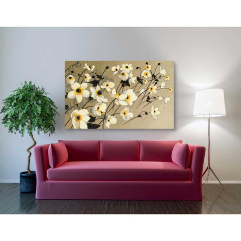 'Anemones Japonaises Blancs' by Shirley Novak, Giclee Canvas Wall Art