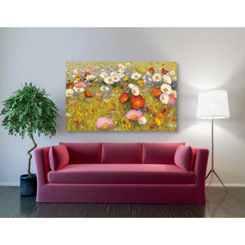 'Champ de Fleur III' by Shirley Novak, Giclee Canvas Wall Art