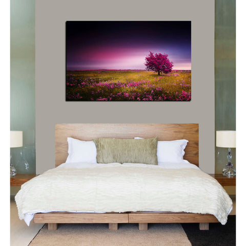 Image of 'Pink Nights' Canvas Wall Art,40 x 60