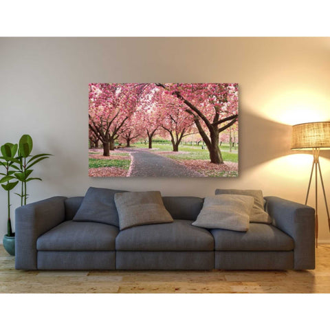 'Cherry Parade' by Katherine Gendreau, Giclee Canvas Wall Art