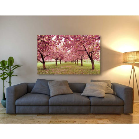 'Hall of Cherries' by Katherine Gendreau, Giclee Canvas Wall Art