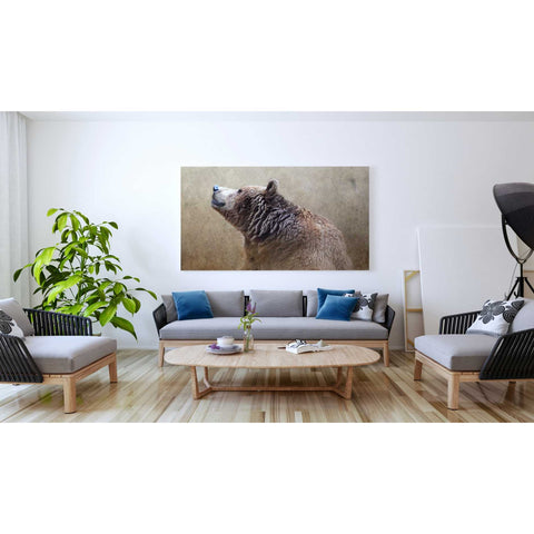Image of 'Big Bear' by Karen Smith, Giclee Canvas Wall Art