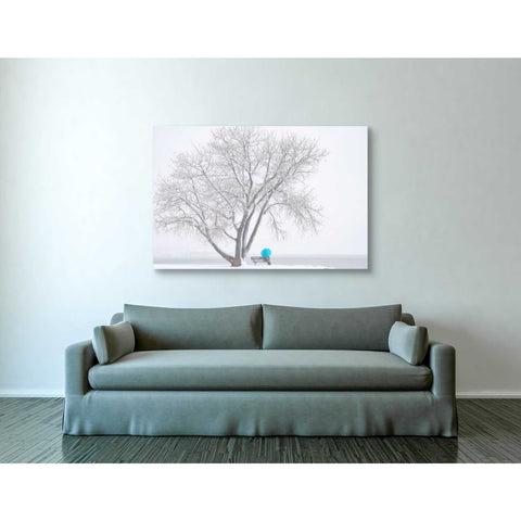 'Another Winter Alone' by Darren White, Canvas Wall Art,40 x 60
