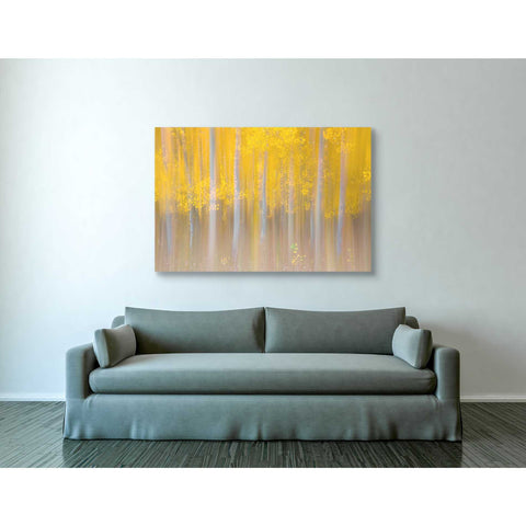 'Changing Seasons' by Darren White, Canvas Wall Art,40 x 60