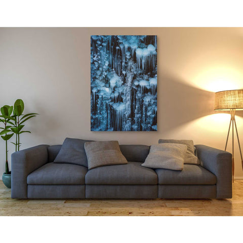 'Dripping in Diamonds' by Darren White, Canvas Wall Art,40 x 60