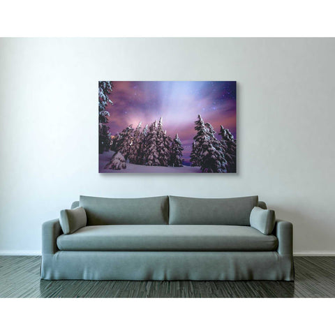 Image of 'Winter Nights' by Darren White, Canvas Wall Art,40 x 60