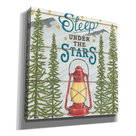 'Sleep Under the Stars' by Deb Strain, Canvas Wall Art