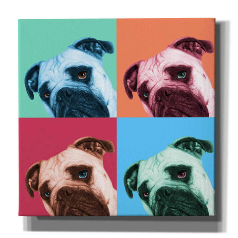 'Que Pasa Pop' by Jon Bertelli, Canvas Wall Art