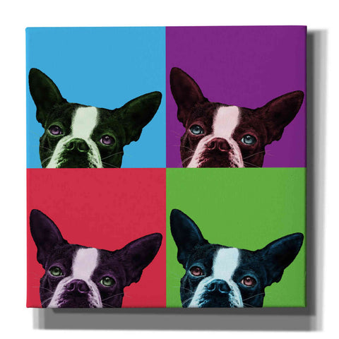 'Loyalty Pop' by Jon Bertelli, Canvas Wall Art