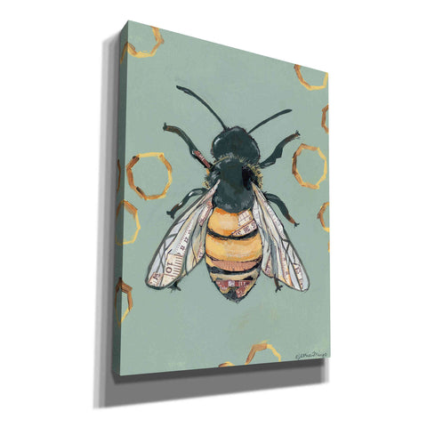 'Bee' by Jessica Mingo, Canvas Wall Art