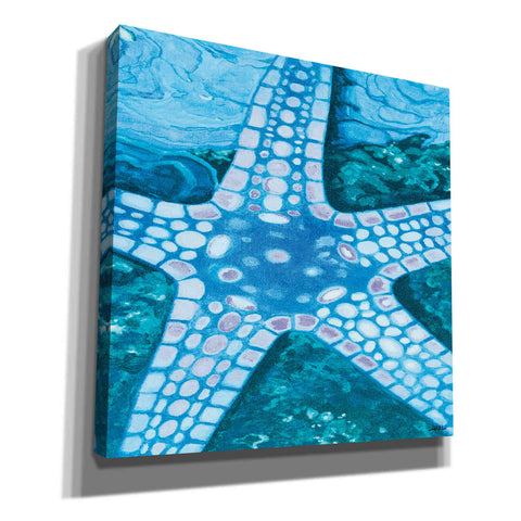'Starfish' by Margaret Juul, Canvas Wall Art