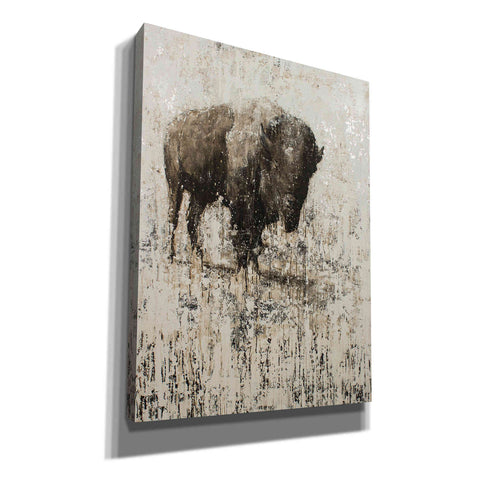 'Lone Buffalo' by Matt Flint, Canvas, Wall Art