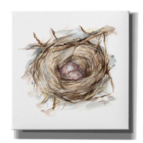 'Bird Nest Study IV' by Ethan Harper, Canvas Wall Art