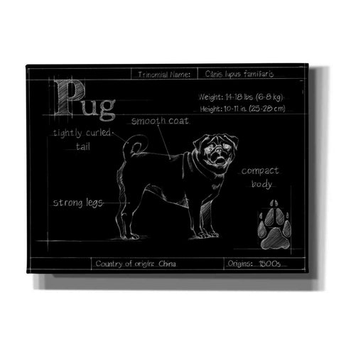 Image of 'Blueprint Pug' by Ethan Harper, Canvas Wall Art