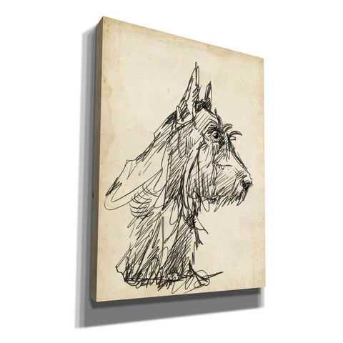 'Breed Studies I' by Ethan Harper, Canvas Wall Art
