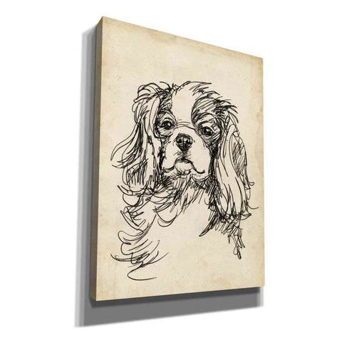 Image of 'Breed Studies II' by Ethan Harper, Canvas Wall Art