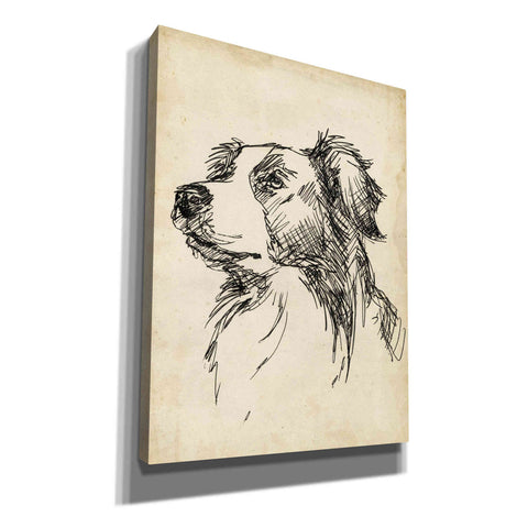 'Breed Studies IX' by Ethan Harper, Canvas Wall Art