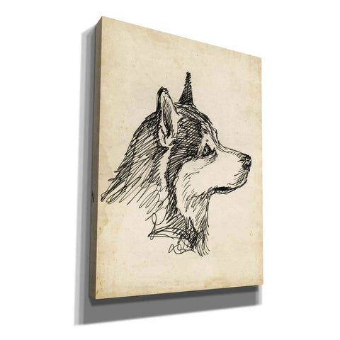 'Breed Studies X' by Ethan Harper, Canvas Wall Art