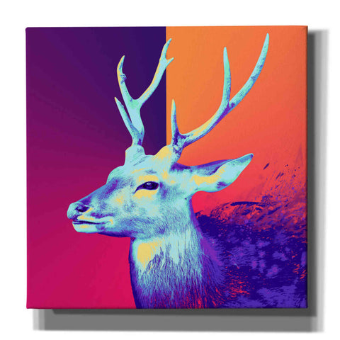 Image of 'A Deer', Canvas Wall Art