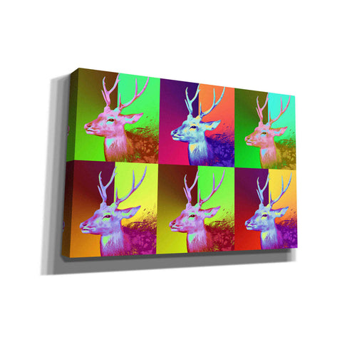 'WarDeerHol,' Canvas Wall Art