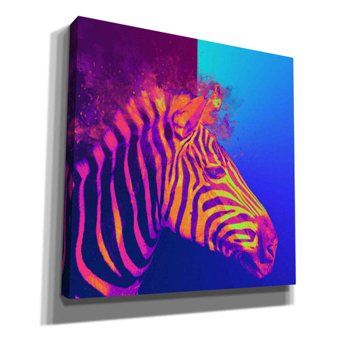 'Zebra Crush,' Canvas Wall Art