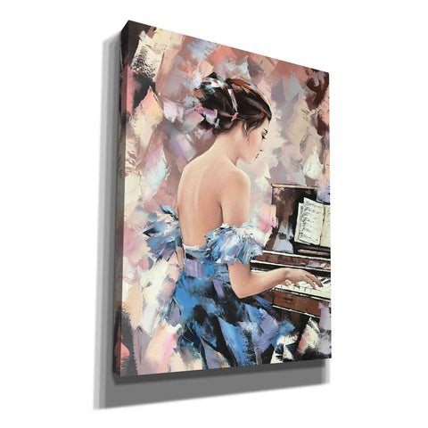 'Moonlight Sonata' by Alexander Gunin, Canvas Wall Art