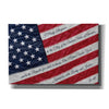'I Pledge Allegiance II' by Lori Deiter, Canvas Wall Art
