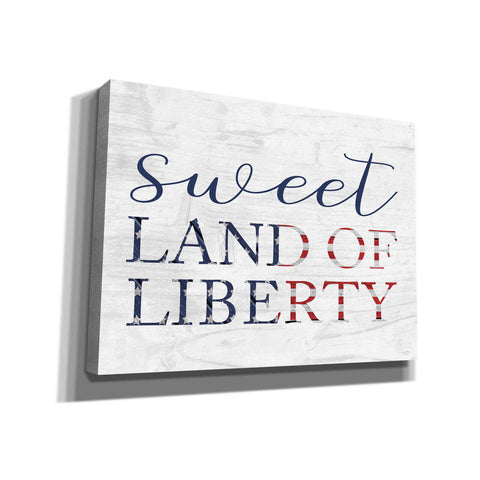 'Sweet Land of Liberty II' by Lux + Me, Canvas Wall Art