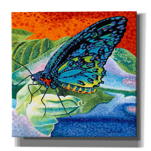 Image of 'Poised Butterfly II' by Carolee Vitaletti, Canvas Wall Art