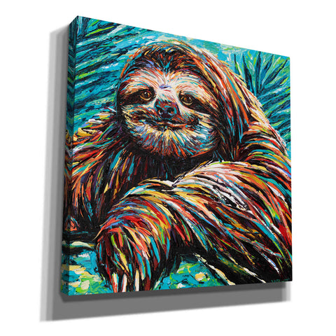'Painted Sloth I' by Carolee Vitaletti, Canvas Wall Art