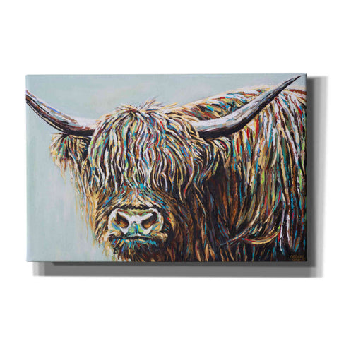 Image of 'Woolly Highland I' by Carolee Vitaletti, Canvas Wall Art