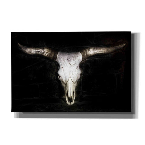 Image of 'Cow Skull' by PH Burchett, Canvas Wall Art