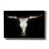 'Cow Skull' by PH Burchett, Canvas Wall Art