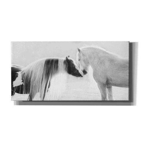 'Collection of Horses III' by PH Burchett, Canvas Wall Art