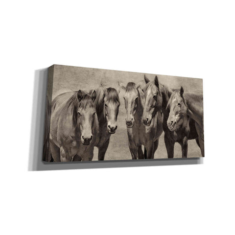 'Meeting of the Minds' by PH Burchett, Canvas Wall Art