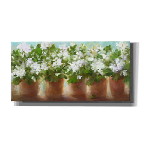 Image of 'In Full Bloom' by Sheila Finch, Canvas Wall Art