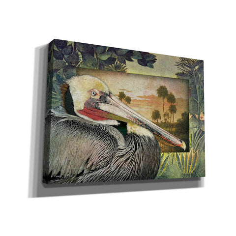 Image of 'Pelican Paradise I' by Steve Hunziker, Canvas Wall Art