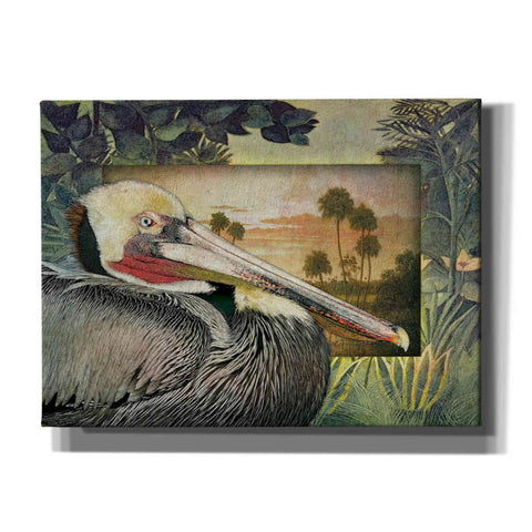 'Pelican Paradise I' by Steve Hunziker, Canvas Wall Art