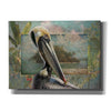 'Pelican Paradise II' by Steve Hunziker, Canvas Wall Art