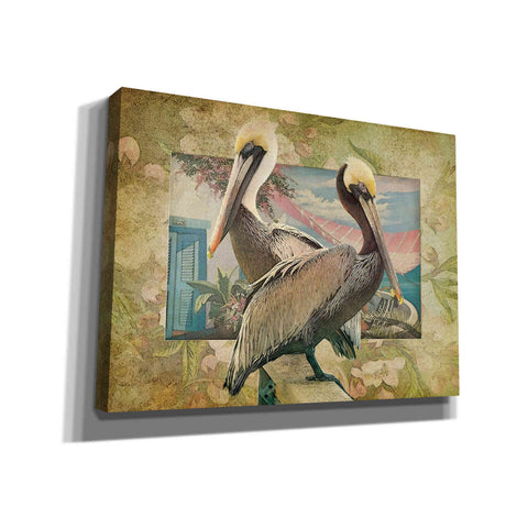 Image of 'Pelican Paradise IV' by Steve Hunziker, Canvas Wall Art