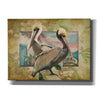 'Pelican Paradise IV' by Steve Hunziker, Canvas Wall Art