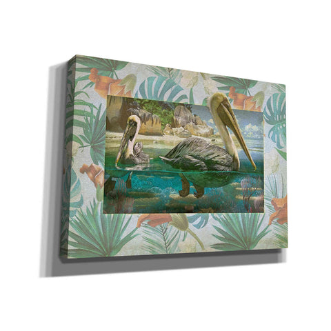 Image of 'Pelican Paradise V' by Steve Hunziker, Canvas Wall Art
