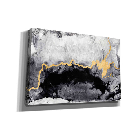 Image of 'Gilded Onyx' by Anna Hambly, Canvas Wall Art