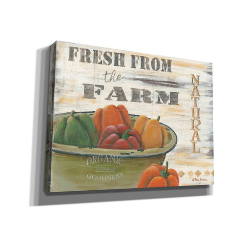 'Fresn From the Farm, Natural' by Pam Britton, Canvas Wall Art