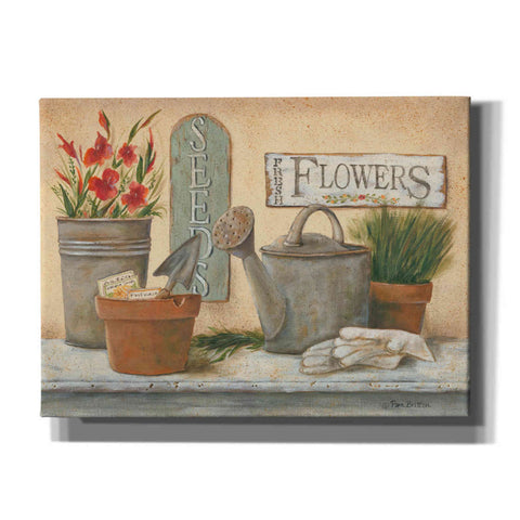 'Garden Shelf I' by Pam Britton, Canvas Wall Art