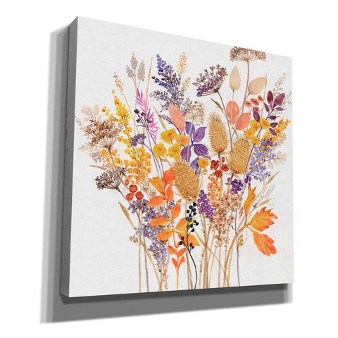 'Dried Arrangement I' by Tim O'Toole, Canvas Wall Art