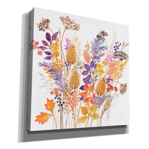 'Dried Arrangement II' by Tim O'Toole, Canvas Wall Art