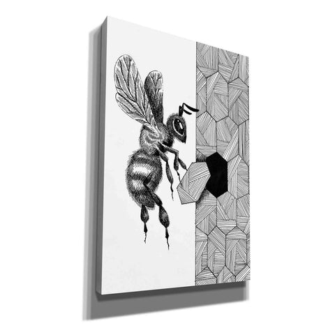 Image of 'Escher Bee ' by Avery Multer, Canvas Wall Art