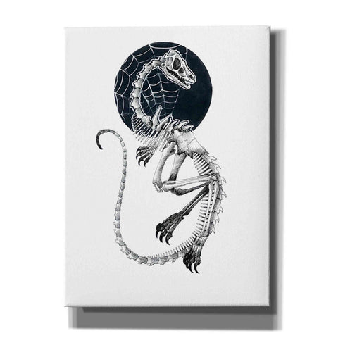 Image of 'Skeletal Velociraptor ' by Avery Multer, Canvas Wall Art
